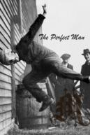 Совершенный (The Perfect Man)