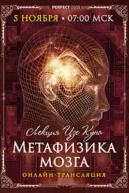 Лекция «Метафизика мозга» [онлайн]